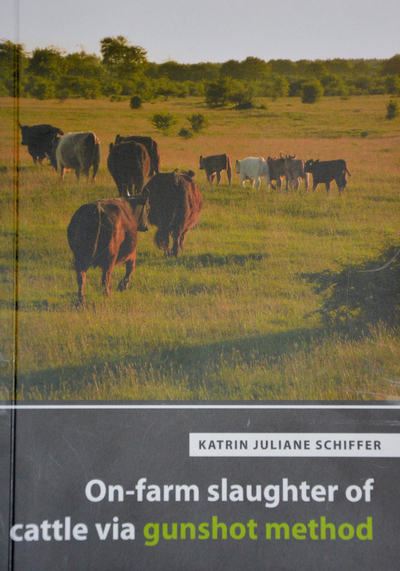 On-farm slaughter of cattle via gunshot method
